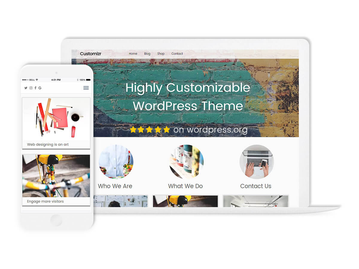 customizr theme feature what_is