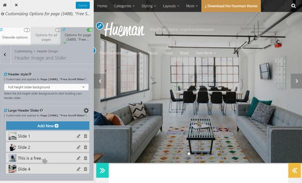 Hueman Pro theme feature pro_header
