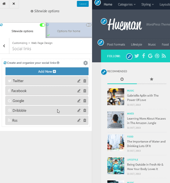 Hueman Pro theme feature social